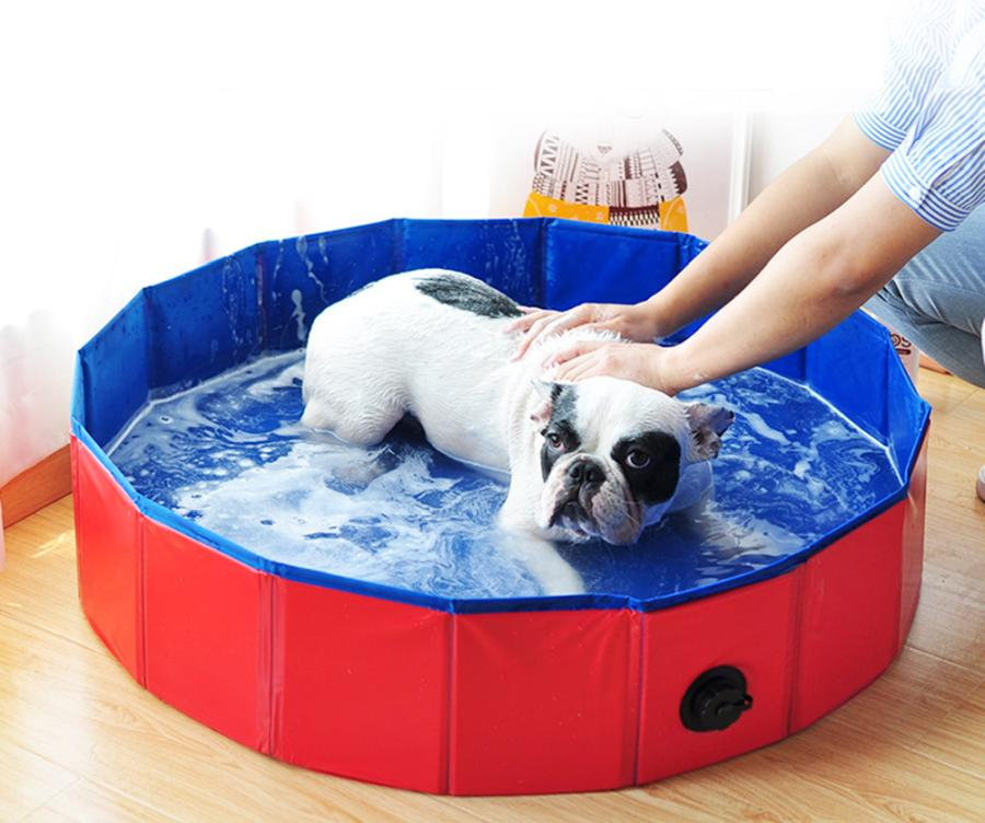 Things To Consider When Choosing A Dog Grooming Bathtub 2
