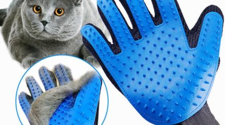 What to Consider When Choosing Cat Grooming Gloves