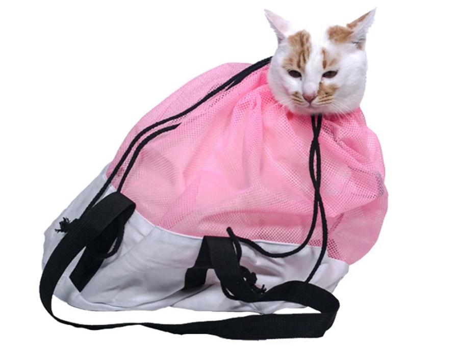 What to Consider When Choosing a Cat Grooming Bag 4