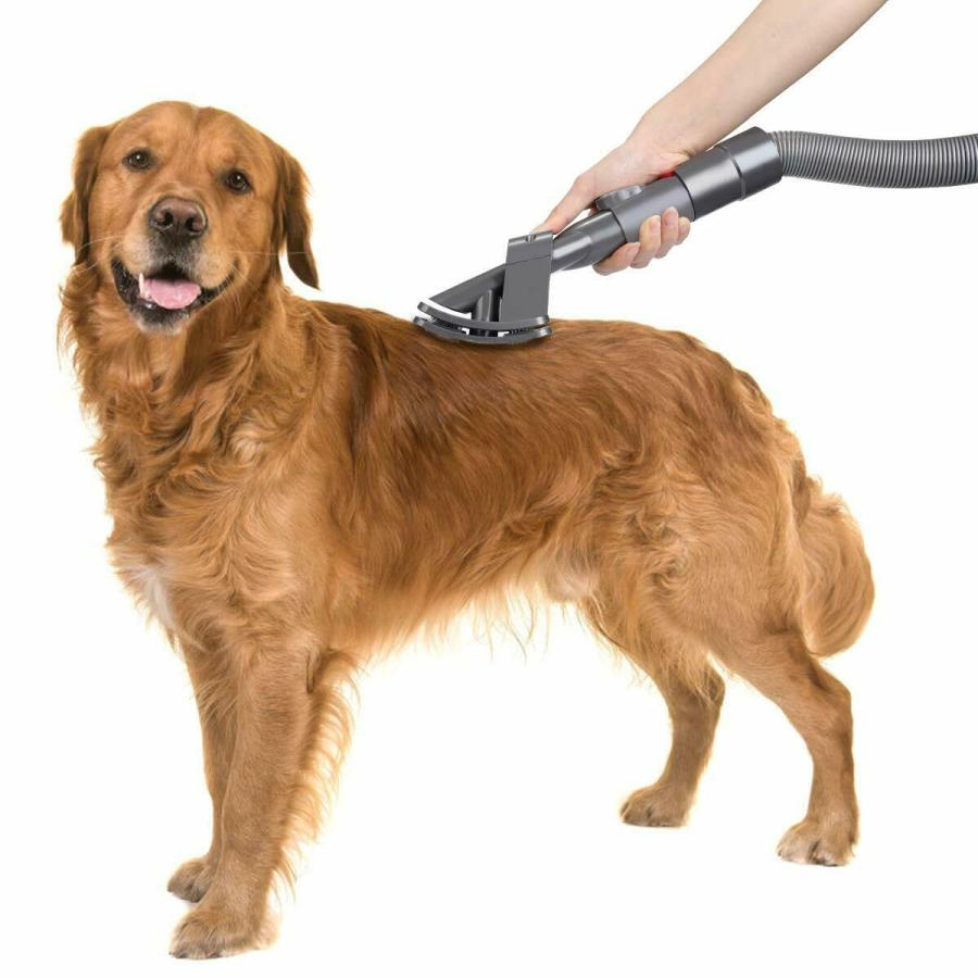 What to Consider When Choosing a Dog Grooming Vacuum 6