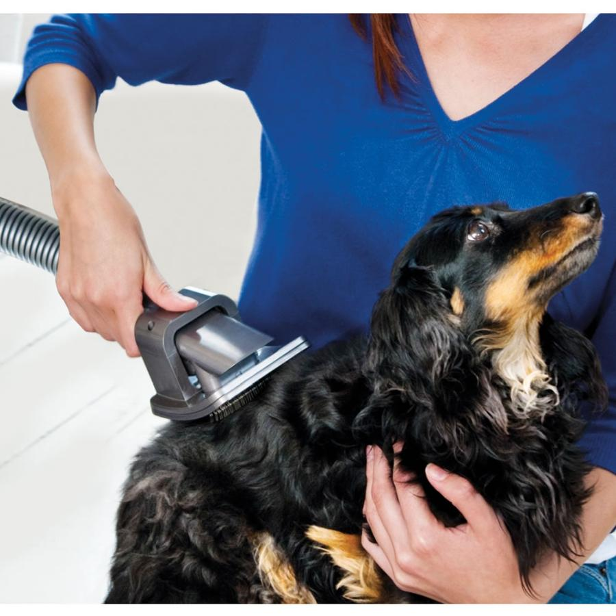 What to Consider When Choosing a Dog Grooming Vacuum 8