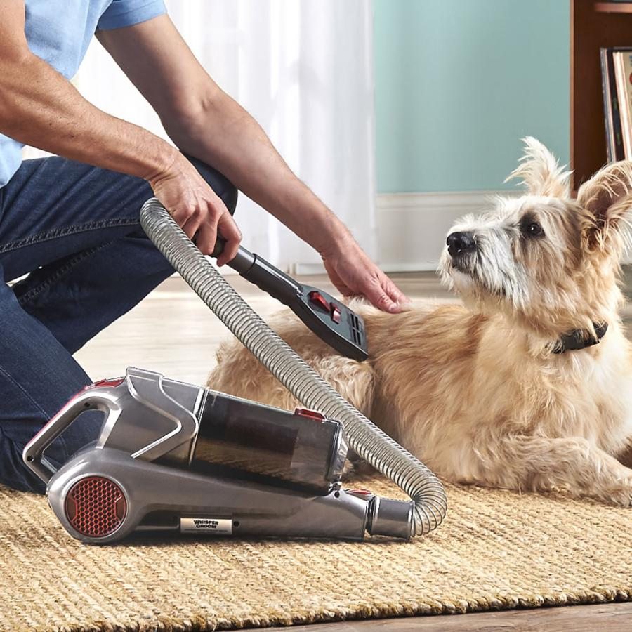 What to Consider When Choosing a Dog Grooming Vacuum 2